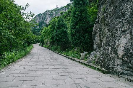景区内清新公路风景图片