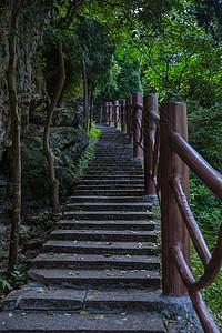 景区内绿植登高山路图片