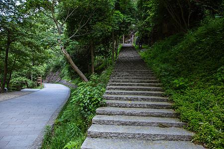 景区内清新自然山路和公路图片