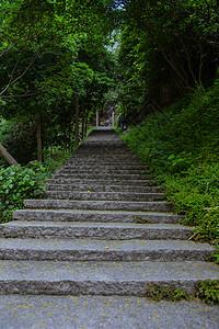 景区内清新自然幽静登高山路图片