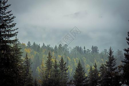 雨雾弥漫的天空图片