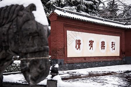 白马驮经-雪中白马寺图片