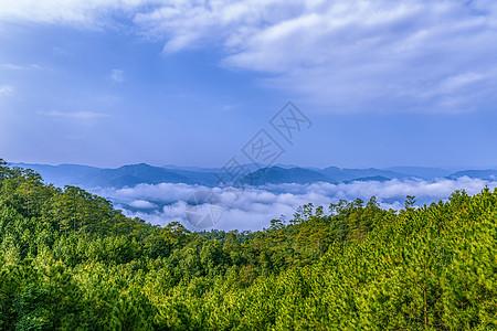 山中云海图片