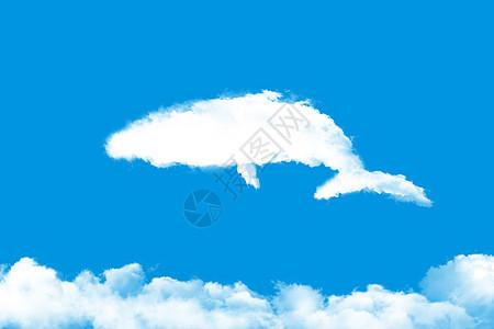 鲸鱼幻想图片