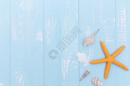 夏日蓝色木板海星海螺贝壳素材图片