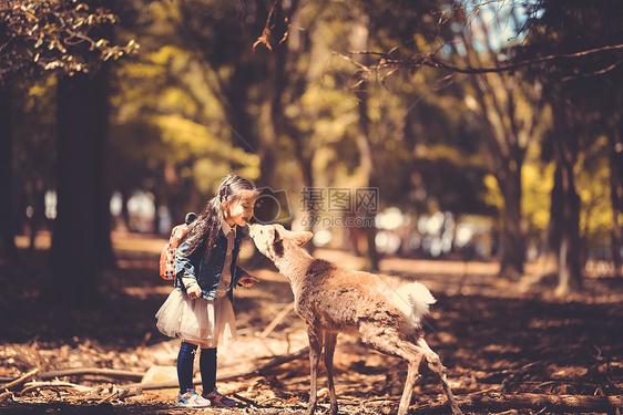 儿童与小鹿图片