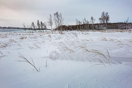 雪地荒原图片
