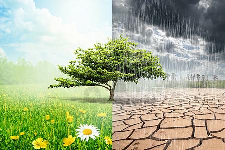 雨季和干旱图片
