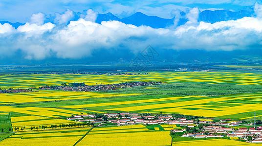 油菜花田中的村庄图片