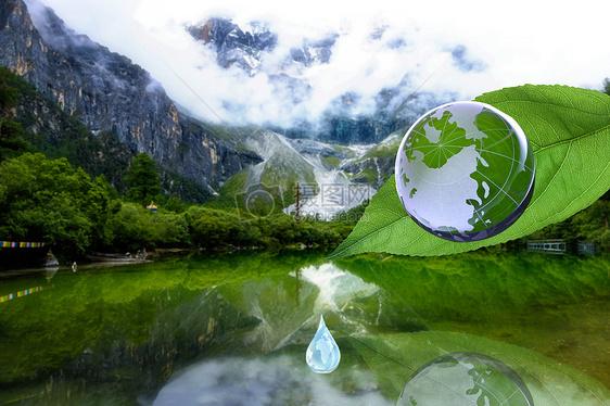 绿叶与地球图片