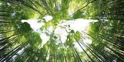 创意绿色背景图片
