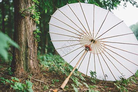 雨天纸伞图片