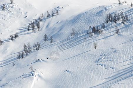 山野雪原图片