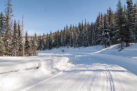 喀纳斯冬季雪路图片