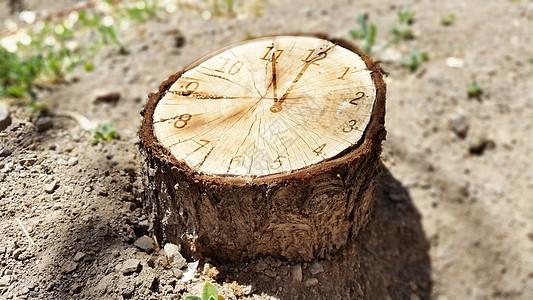 时间年轮创意环保图图片