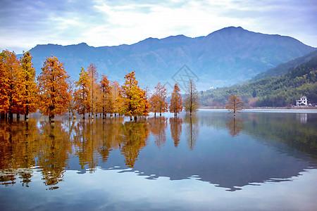 黄山脚下宏村的风景图片