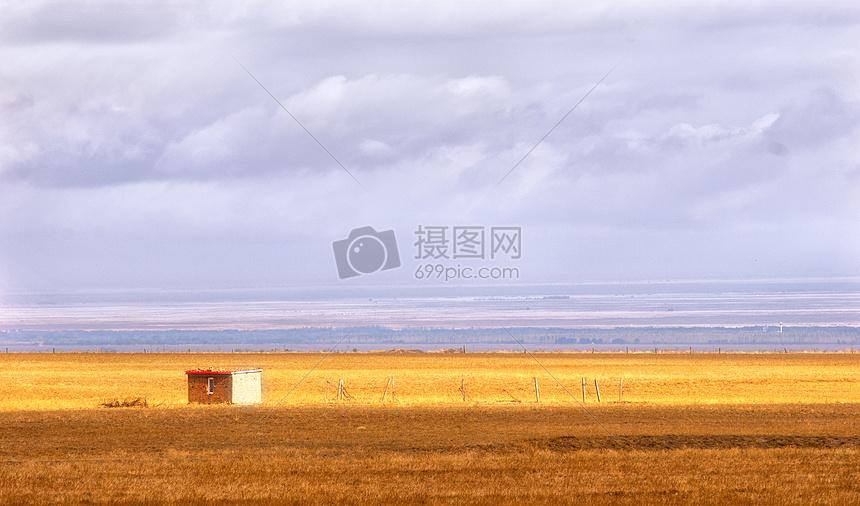 唯美图片 自然风景 新疆草原金黄色jpg