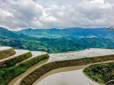 从七星伴月观景台看桂林龙脊梯田图片