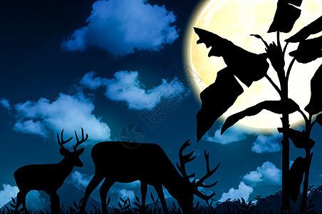 月光下的鹿图片