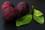 水果杨梅微距图片