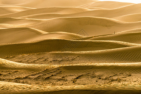 塔克拉玛干沙漠图片