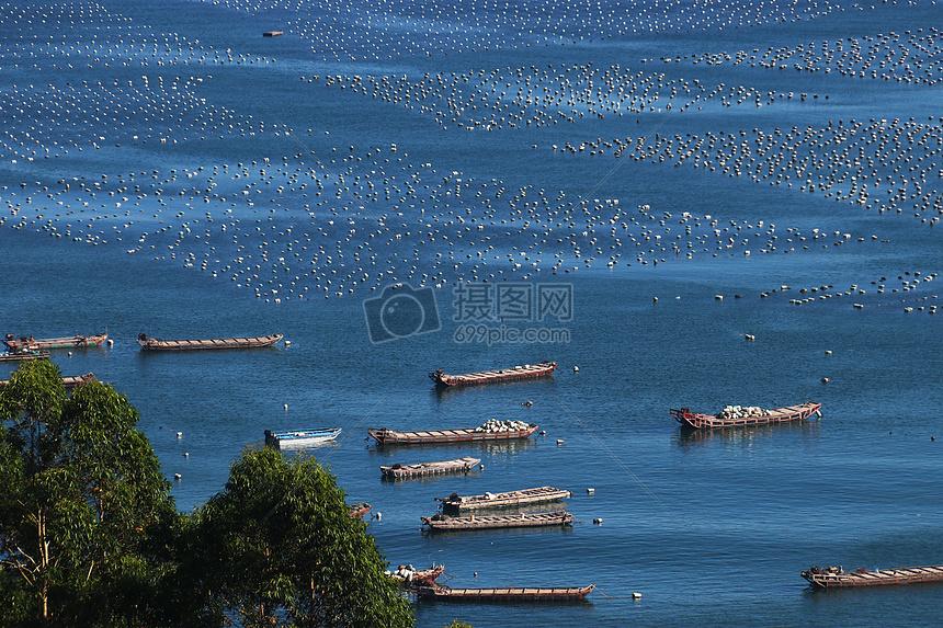 厦门海边渔船图片