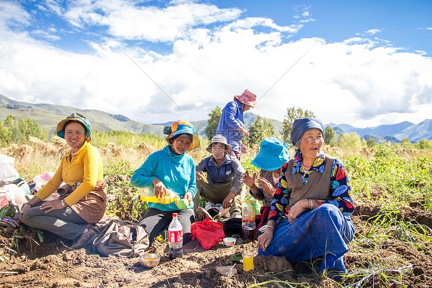 蓝天下耕作的藏民图片