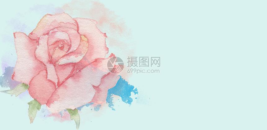 纯色花朵背景图片