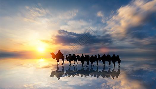 澳大利亚 布鲁姆 凯布尔海滩驼队图片
