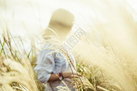 夕阳透过芦苇丛照在女孩身上图片