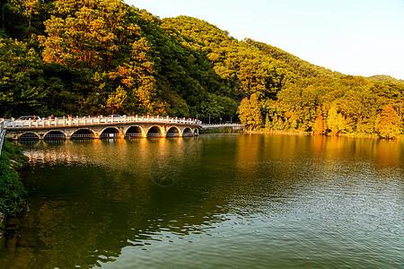 金黄色夕阳下树林旁湖边上多孔桥倒影在湖里波光粼粼图片