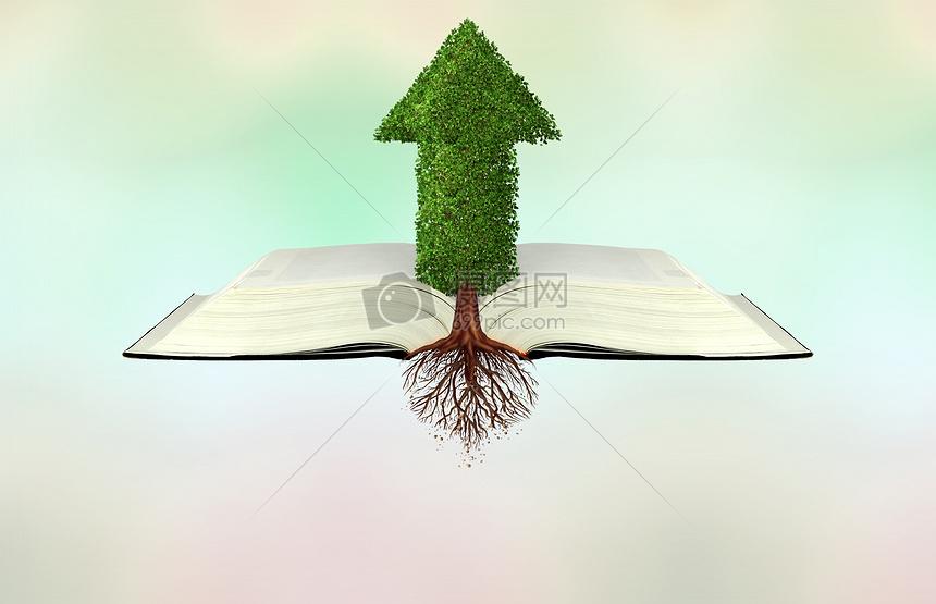 书中的绿色图片