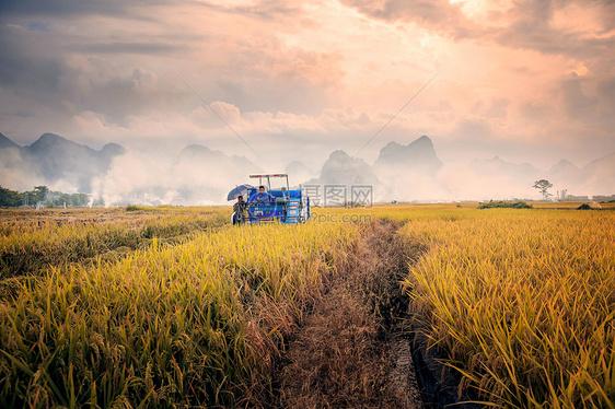 广西田园农耕图片