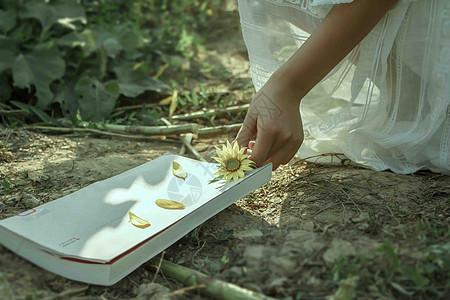 捡花朵的姑娘图片