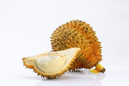榴莲 白背景图片