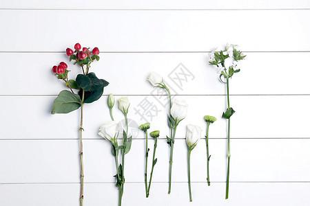 小清新 花 鲜花图片