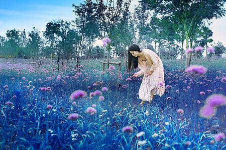 马蹄草中的美女图片
