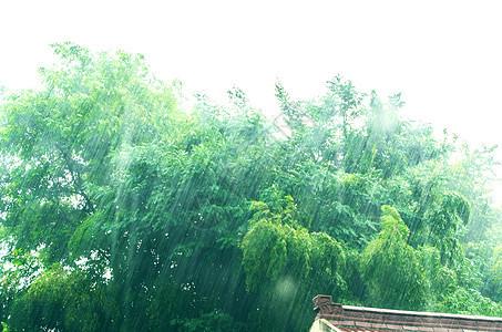 夏天午后的暴雨图片