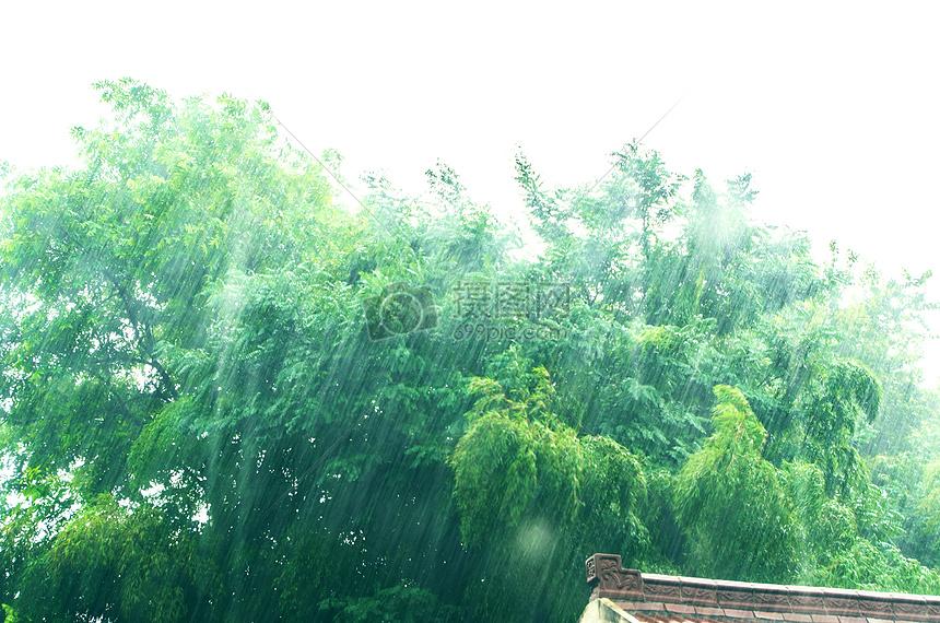 夏天午后的暴雨摄影图片免费下载_自然/风景图库大全