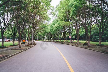 停车场马路绿色图片