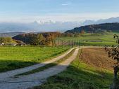 绿色田园风光500445609图片