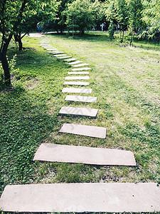 夏日公园小路图片