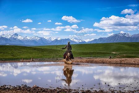 骏马奔驰在蓝天白云下图片