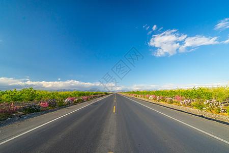 新疆公路图片