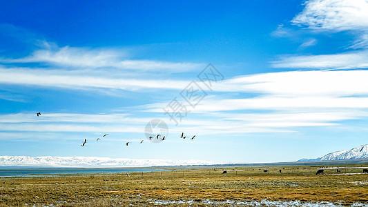 新疆巴里坤湖图片