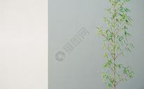 墙面竹子背景图片