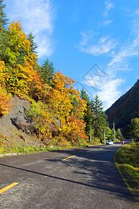 卡龙沟的公路图片