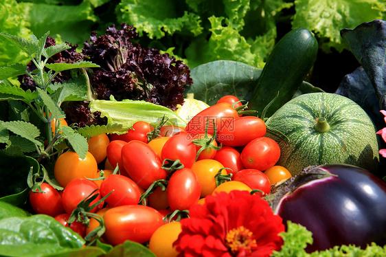 蔬菜水果及花卉图片
