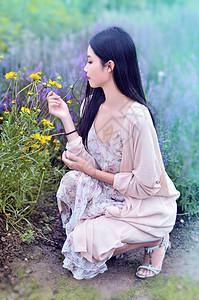 上海薰衣草园的美女写真图片
