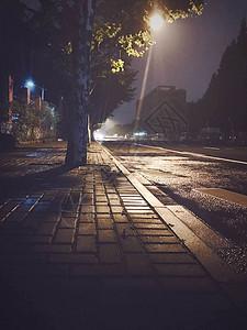 雨后的上海图片